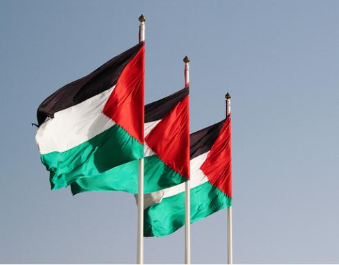 فلسطين:17وفاة و 194