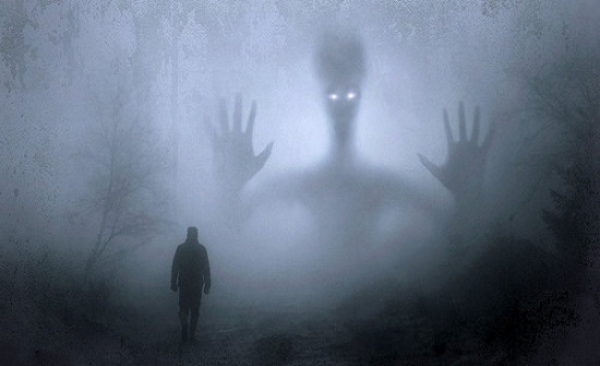 العلماء يكشفون المخلوق الذي يُرعب الإنسان أكثر من سواه