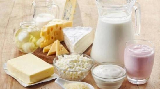 مشروع لانتاج الحليب بالمزار الجنوبي