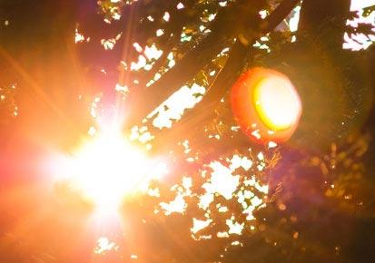 عمان تُسجّل ثالث أعلى درجة حرارة في تاريخ سجلاتها المناخية