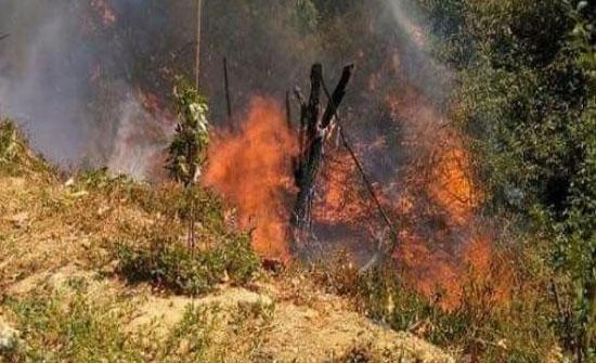 إخماد حريق شب بـ 60 دونما من الأعشاب والأشجار الحرجية في اربد