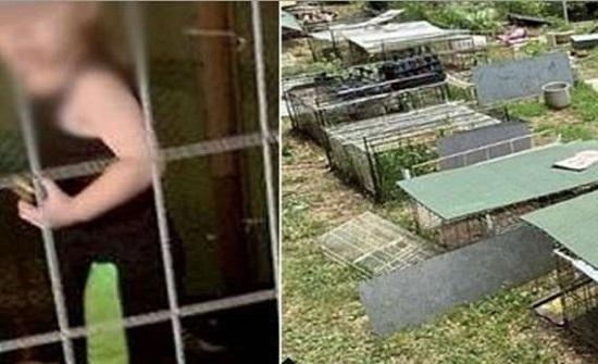 امريكا : العثور على طفل محبوس داخل قفص وسط الثعابين
