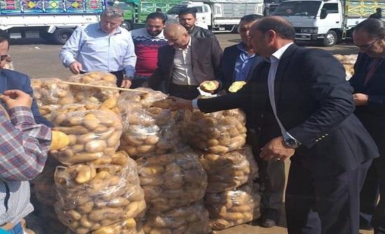 وزارة  الزراعة: نسبة التلف في البطاطا اقل من الطبيعية