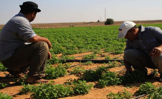 """خبراء زراعيون: مبررات توقيع """"وادي عربة"""" لم تتحقق"""