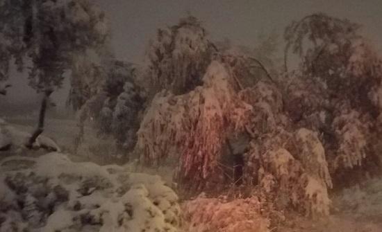 بالصور ... لقطات مختلفة من تساقط الثلوج في السلط
