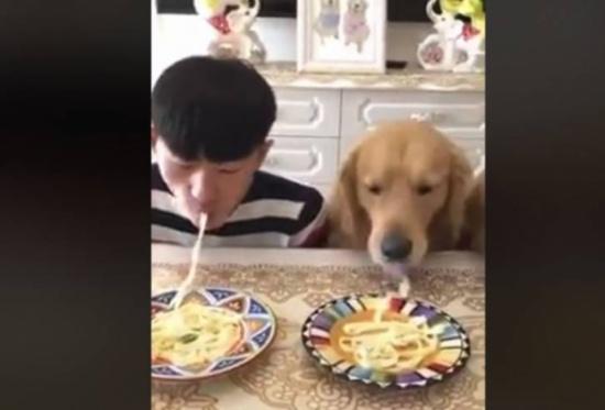 فيديو| نهاية غير متوقعة لتحدي بين شاب وكلبين في تناول الطعام!