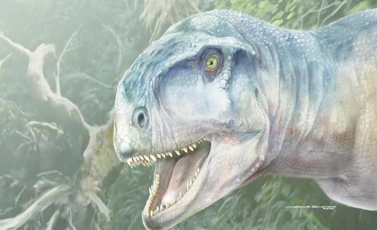 الكشف عن جمجمة ديناصور مفترس عاش قبل 85 مليون سنة