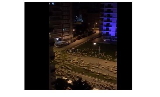 مئات الخراف تغزو مدينة تركية مستغلة حظر التجول- (شاهد)