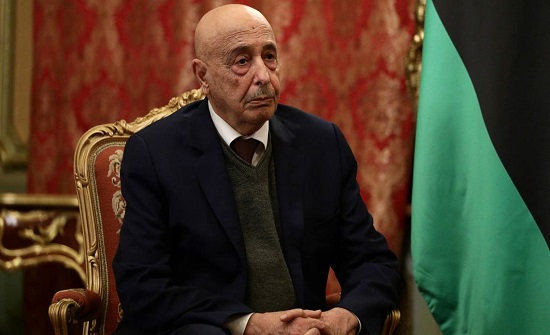 عقيلة صالح يبحث في القاهرة توحيد المؤسسات الليبيبة