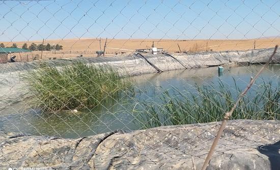 المياه تضبط اعتداء على خط ناقل رئيس بالكرك