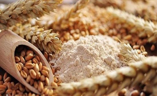 جمعية رعاية مرضى حساسية وتحسس القمح تحتفي باليوم العالمي للسيلياك