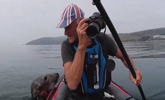 بالفيديو : فقمة لطيفة تعشق السياح في بريطانيا