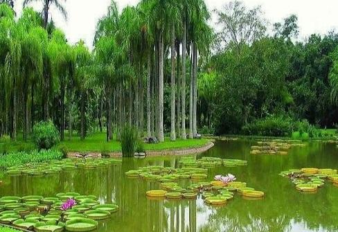 مناظر طبيعية جميلة - صور