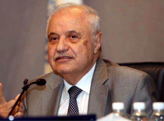 أبوغزاله: الحل الوحيد لخروج الدول العربية من الأزمة الاقتصادية هو خطة للاكتفاء الذاتي