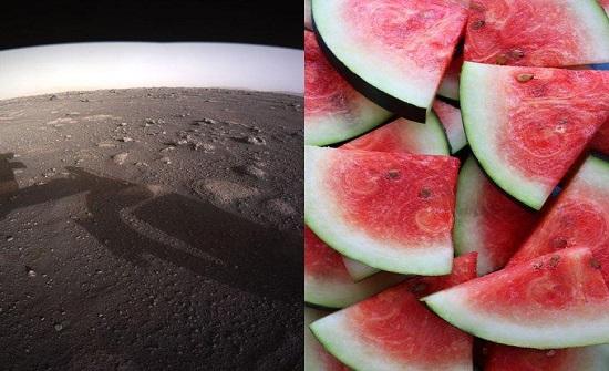 ما حقيقة العثور على شحنة بطيخ في المريخ؟