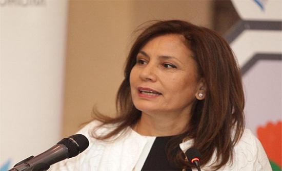 زواتي: مسوحات تشير إلى توافر النفط والغاز بالأردن