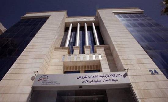 الأردنية لضمان القروض تضمن 1223 قرضا العام الماضي
