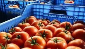 انخفاض أسعار المنتجين الزراعيين 5ر14%