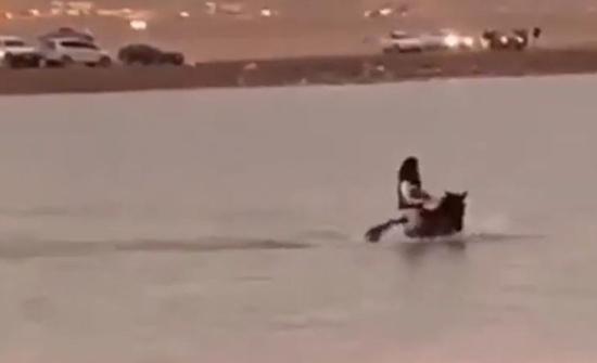 شاهد: شاب يتسبب في غرق حصانه بعدما حاول قطع مستنقع مائي في السعودية