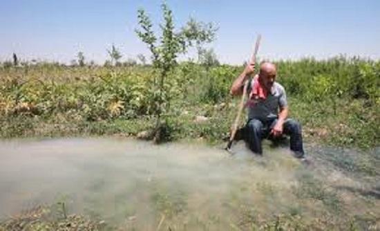 سلطة وادي الأردن تعفي المزارعين من موافقتها على الرهن لغايات القروض