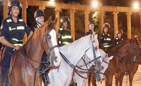 الأمن يعرض خيولاً للبيع في المزاد