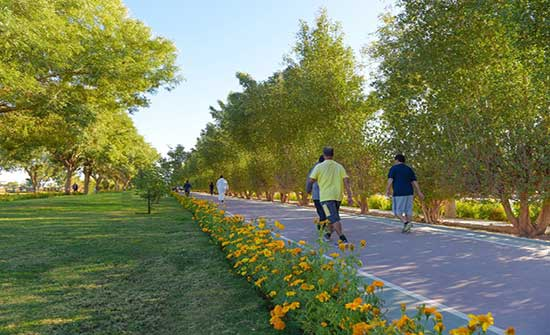 مواطنون يدعون لتخصيص مسارات آمنة لرياضة المشي والأمانة تبدأ بكريدور عبدون