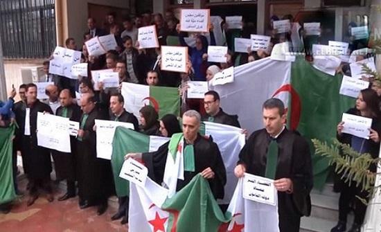 قضاء الجزائر معلق.. استجابة واسعة للإضراب المفتوح