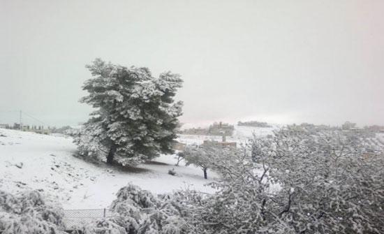 تساقط الثلوج على رأس النقب.. والطريق سالكة بحذر