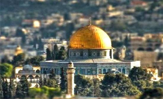 مفتي القدس: أي اقتحام للأقصى تحت أي مسمى مرفوض تماما