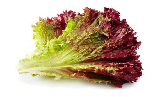 الخس الأحمر .. لفقدان الوزن وتعزيز صحة القلب