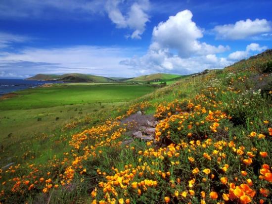 طقس صيفي إعتيادي إلى حار نسبياً في العديد من المناطق الخميس