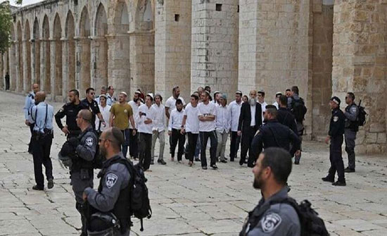 السلطات الإسرائيلية تبعد 7 فلسطينيين بينهم سيدتان عن الأقصى لمدة 15 يوما