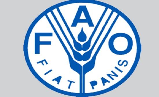 الفاو تعلن عن بدء استلام الطلبات للاستفادة من منح الانشطة الزراعية