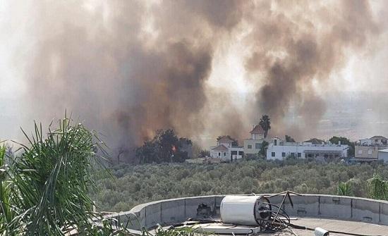 بالفيديو والصور.. الحرائق تجبر 5000 إسرائيلي على النزوح