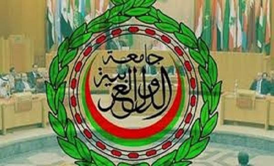 الجامعة العربية تشارك في متابعة انتخابات مجلس الشيوخ بمصر