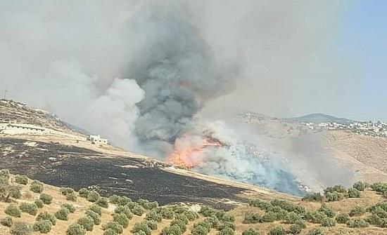 اخماد حريق أتى على 350 دونماً بالكورة