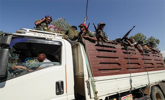 إثيوبيا.. رئيس الوزراء يعد بالحسم قريبا في تيغراي