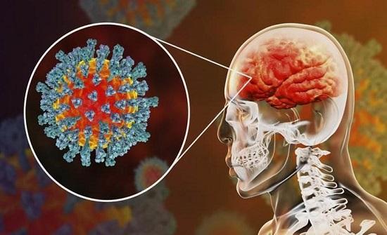 اكتشاف تأثير جديد لـ كورونا على الدماغ