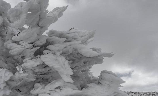 بالصور : شاهدوا انجماد وصقيع جبل مبرك في لواء البتراء