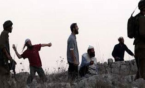مستوطنون يهود يعتدون على ممتلكات فلسطينيين غرب سلفيت