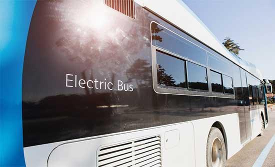 الامانة :151 حافلة جديدة ستنضم لمنظومة النقل العام