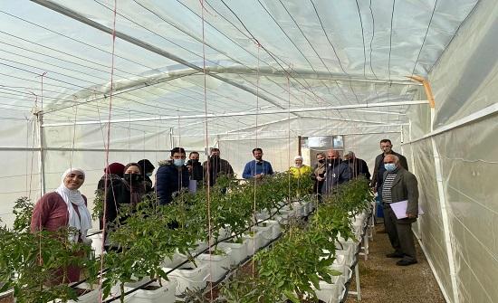 اختتام مشروع تعزيز الأمن الغذائي من خلال أنظمة الزراعة الحضرية