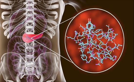 دراسة: كورونا يتسلل للبنكرياس ويصيب بعض مرضى السكري