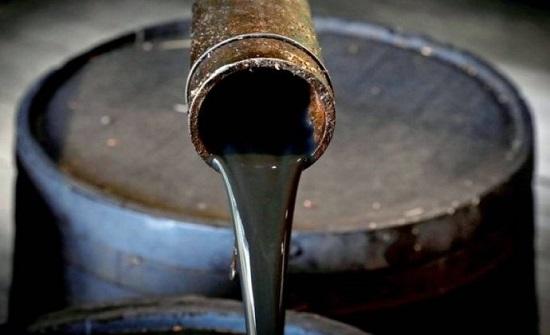 الذيابات : نقلنا نحو 3.5 مليون برميل من النفط العراقي إلى الأردن