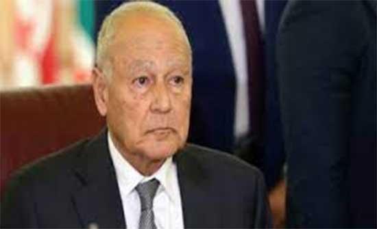 أبو الغيط يبحث مع الرئيس التونسي الأوضاع العربية