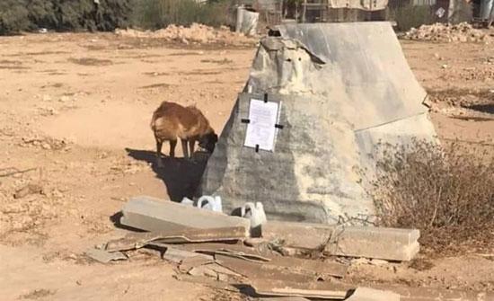 بالصور : السلطات الإسرائيلية تخطر بهدم بيت كلب