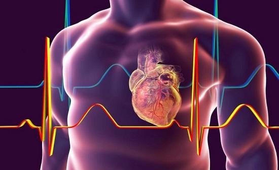علماء يعيدون قلبًا ميتًا للحياة تمهيدًا لعملية زراعة أعضاء (فيديو)