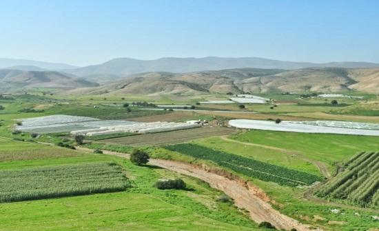 زراعة الأغوار الشمالية تدعو لتنظيم عمليات الري لمواجهة آثار موجة الحر