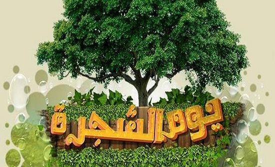 فاعليات رسمية وشعبية تحتفل بيوم الشجرة