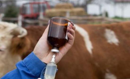مطالب بتوفير العلاجات البيطرية في زراعة البادية الشمالية الشرقية